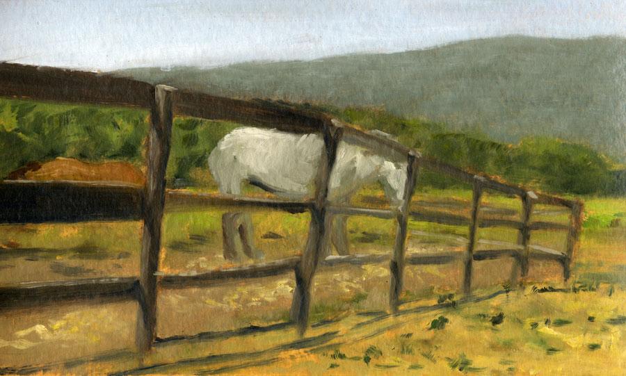 Horses-(9)