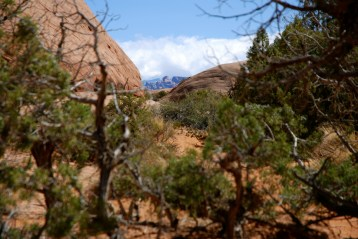 2012-PSM-Moab 2012 Poison Spider Mesa – 17