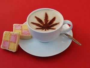 Amsterdam Coffeeshops Rated