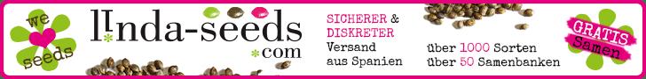 Dieser Blogpost wurde gesponsert von Linda-Seeds. 5€ des Sponsoring werden gespendet an die ACM