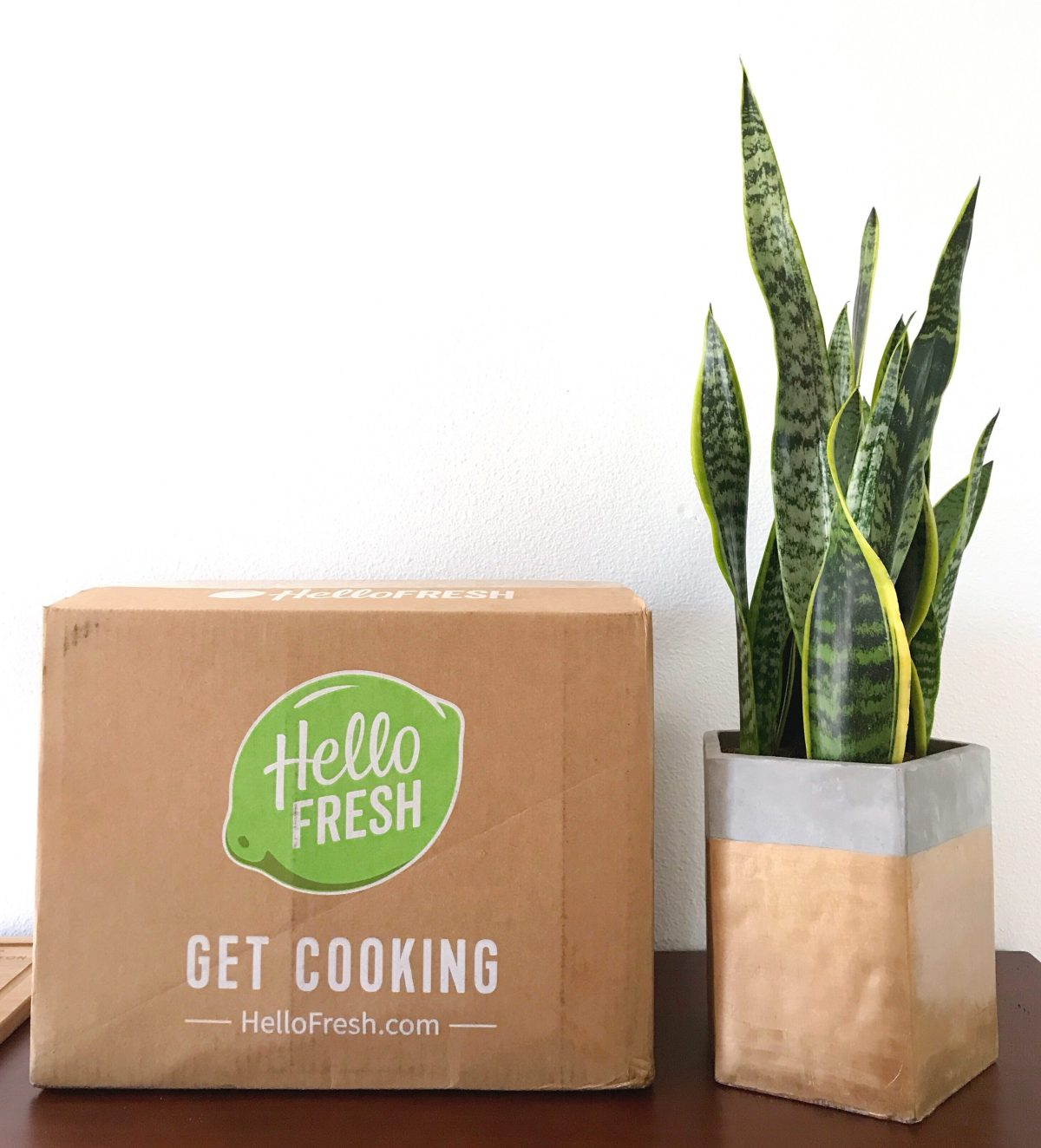 HelloFresh box next to a snake plant in a gold and concrete pot on a wood kitchen counter