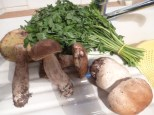 Cepes and parsley bought from the market