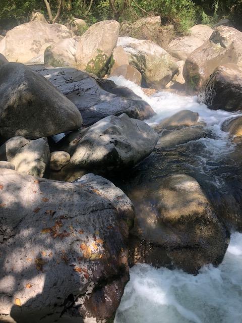渓流釣行ブログ