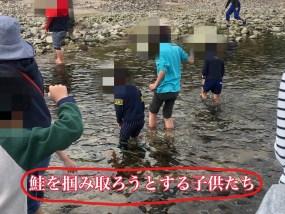 鮭の遡上する川