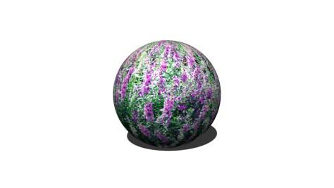 球P2270718