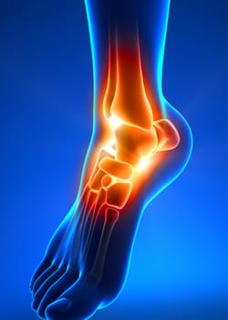 lower-extremities-ankle
