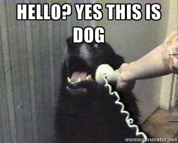 https://i2.wp.com/keithlovesmovies.com/wp-content/uploads/2015/06/hello-dog.jpg?resize=349%2C281&ssl=1
