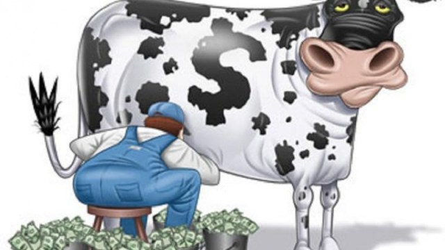 https://i2.wp.com/keithlovesmovies.com/wp-content/uploads/2015/12/cash-cow.jpg?resize=640%2C360&ssl=1