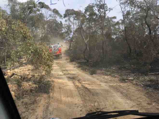 A picture of a fire truck on a track in the Australian bush in NSW