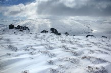 D17071-Cheviot-from-The-Sch