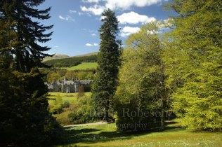 D17655-Dawyck-Botanic-Garde