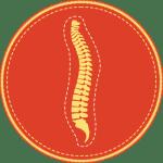 Badge icon for Explore Center's Pre-Chiropractic program