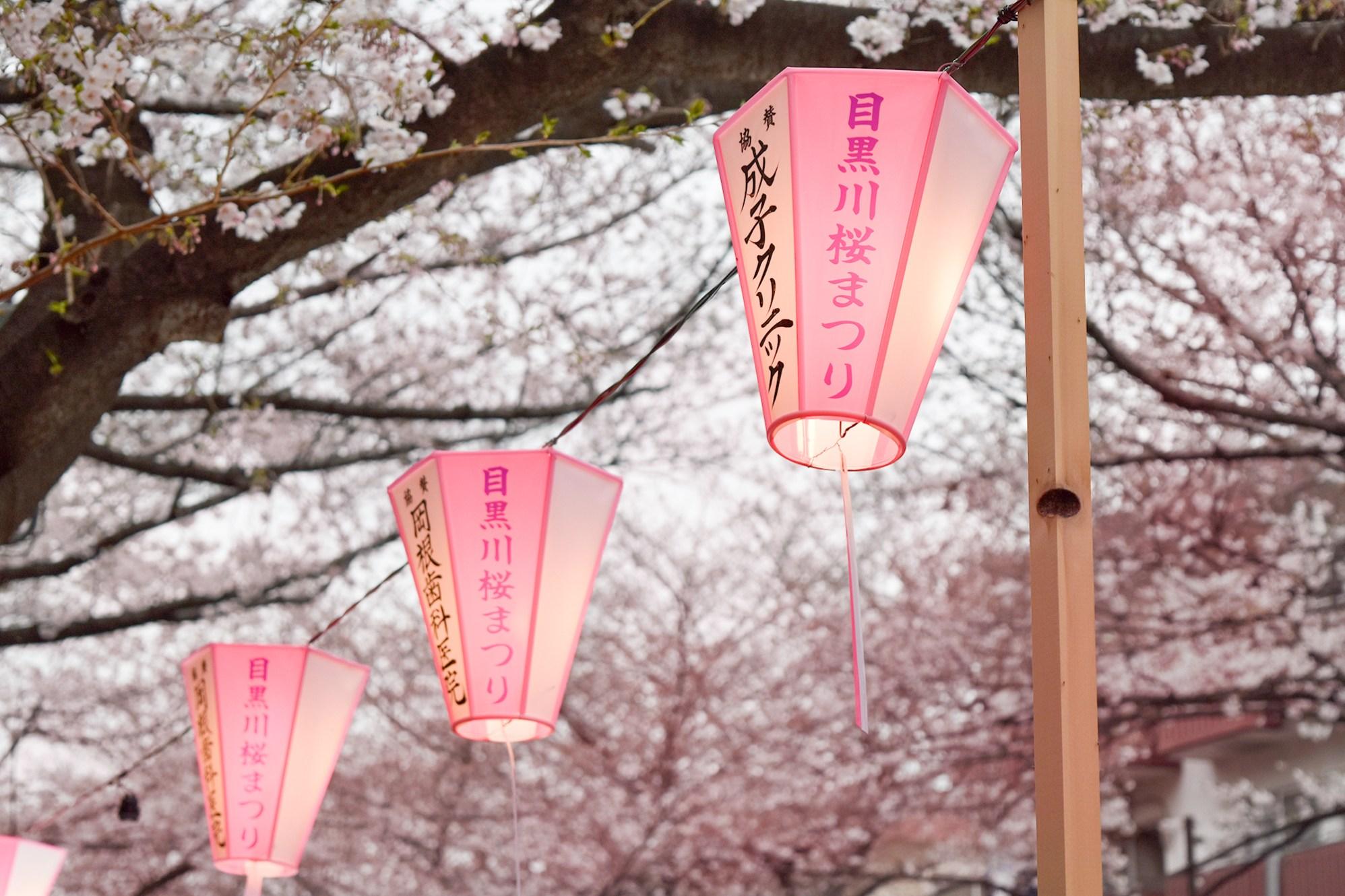 Lanterns along Meguro River