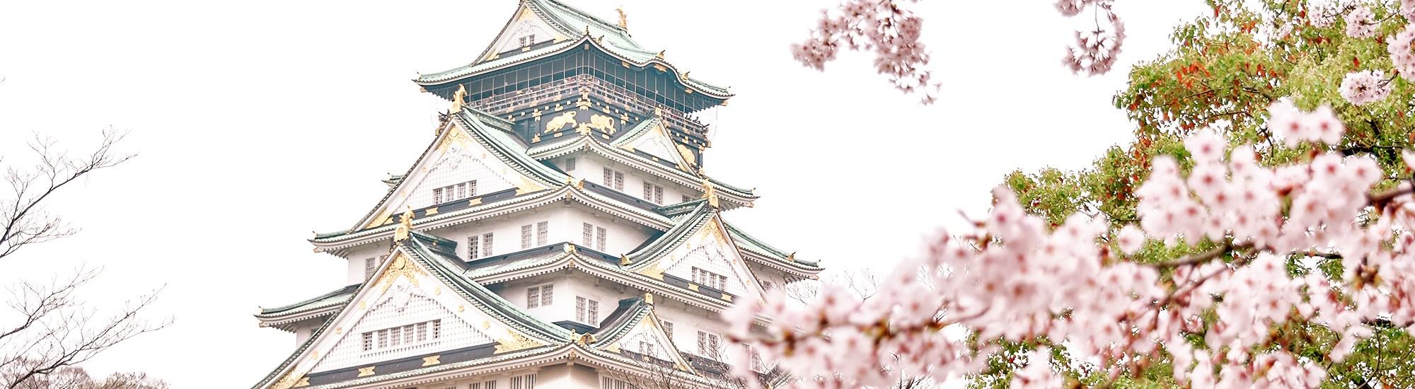 Spring in Osaka, Kyoto and Nara (Part 2 of Japan Trip)