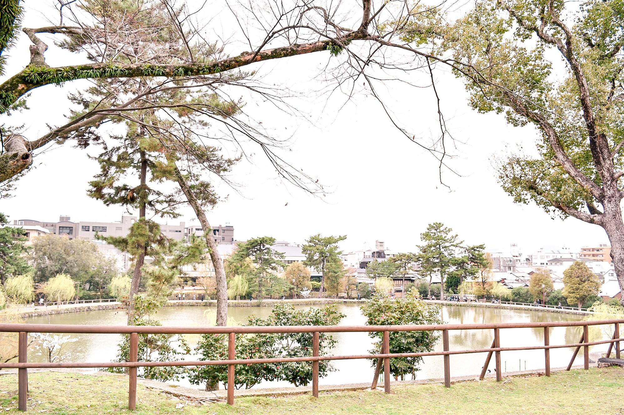 Sarusawa Lake in Nara, Japan