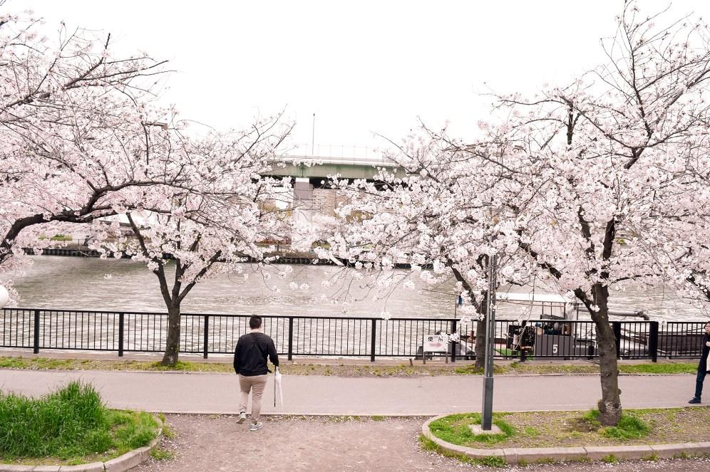 Kema Sakuranomiya Park in Osaka, Japan
