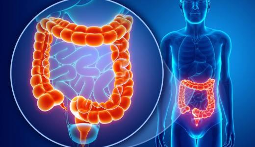 大腸がん検診を徹底解説!検査の種類と方法、なぜ受けるべきか?