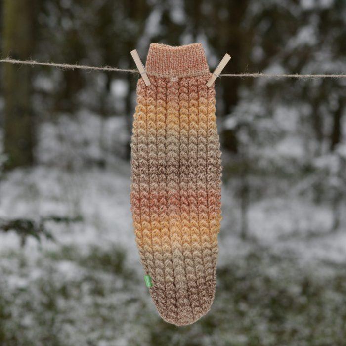 Megztinis šuniui taksui