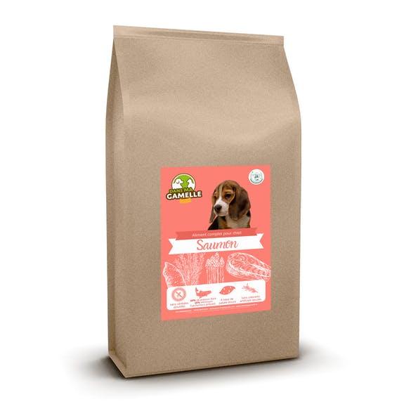 hipoalerginis maistas šunims