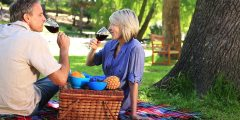 stock-footage-happy-couple-having-a-picnic-in-the-park-on-a-sunny-day