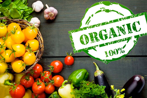 Groceries-Organic-Vegetables-fruits-Bio