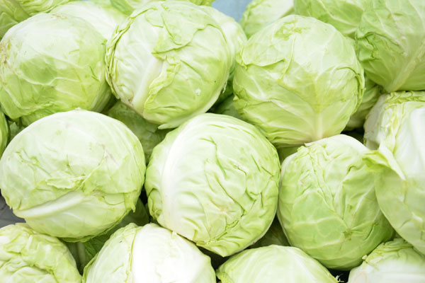 cabbage_choux_delivery_lebanon
