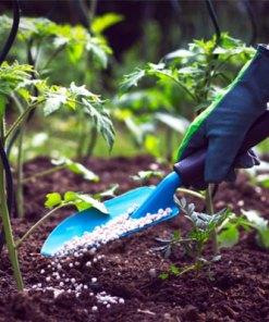 Compost & Fertilizers