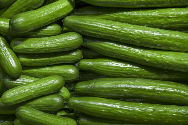 cucumber_concombre_delivery_lebanon