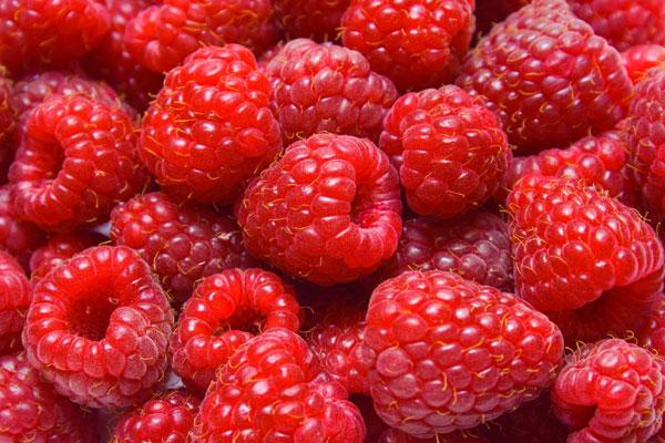framboise_raspberry_delivery_lebanon