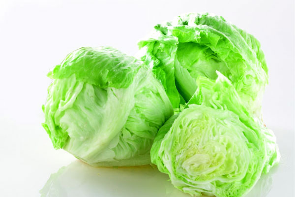 iceberg_salade_laitue_lettuce_delivery_lebanon