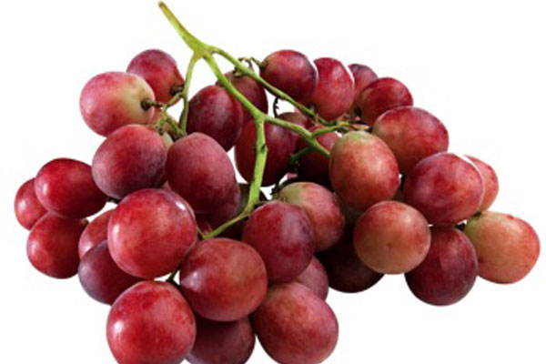 raisin_grapes_red_rouge-round_delivery_lebanon
