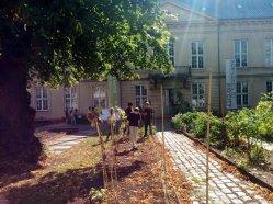 Vaikai užsiima sodininkyste Kopenhagos muziejaus kieme