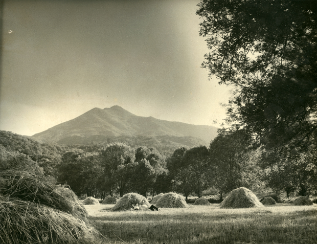 Kentfield with Mt. Tam in the backgroun circa 1929