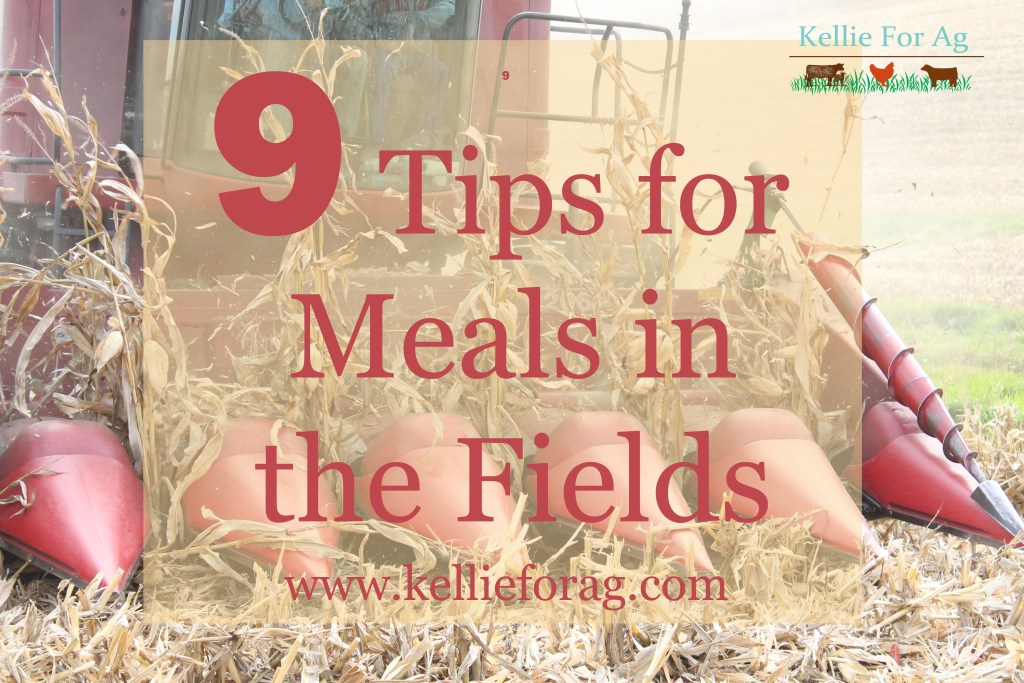 MealsintheFields