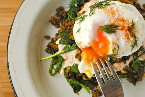 lentils, eggs yogurt