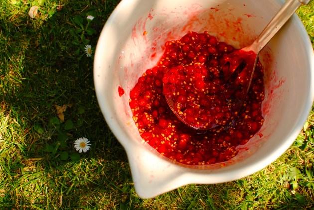 mashed fruit for vinegar
