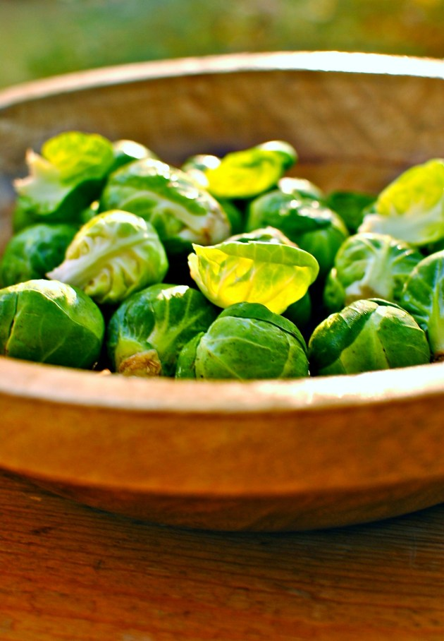 brussels-sprouts-image