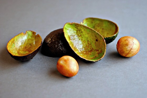 avocado shells and pit