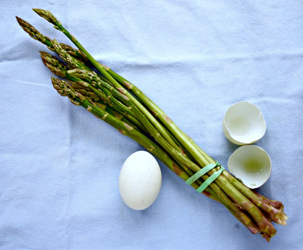 scottish-asparagus-duck-egg