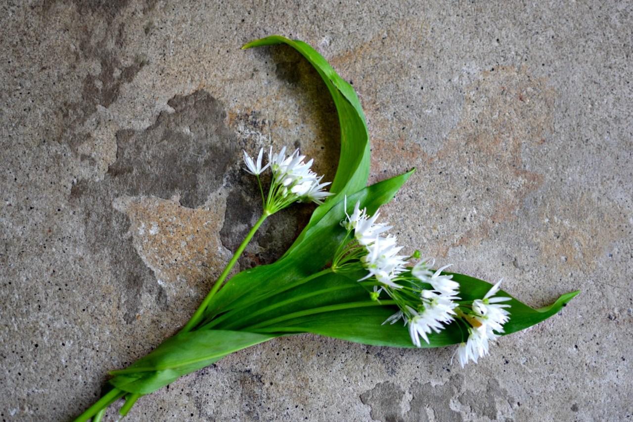 wild-garlic-flowers-food-to-glow.jpg