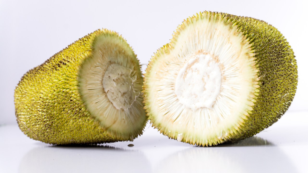 young jackfruit - licensed from shutterstock