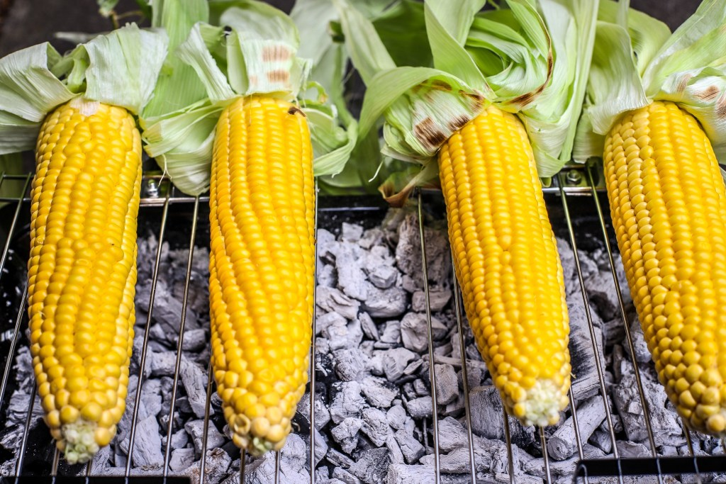 sweetcorn with husks over ashy BBQ coals