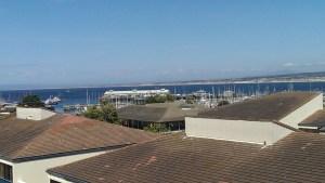 Portola View