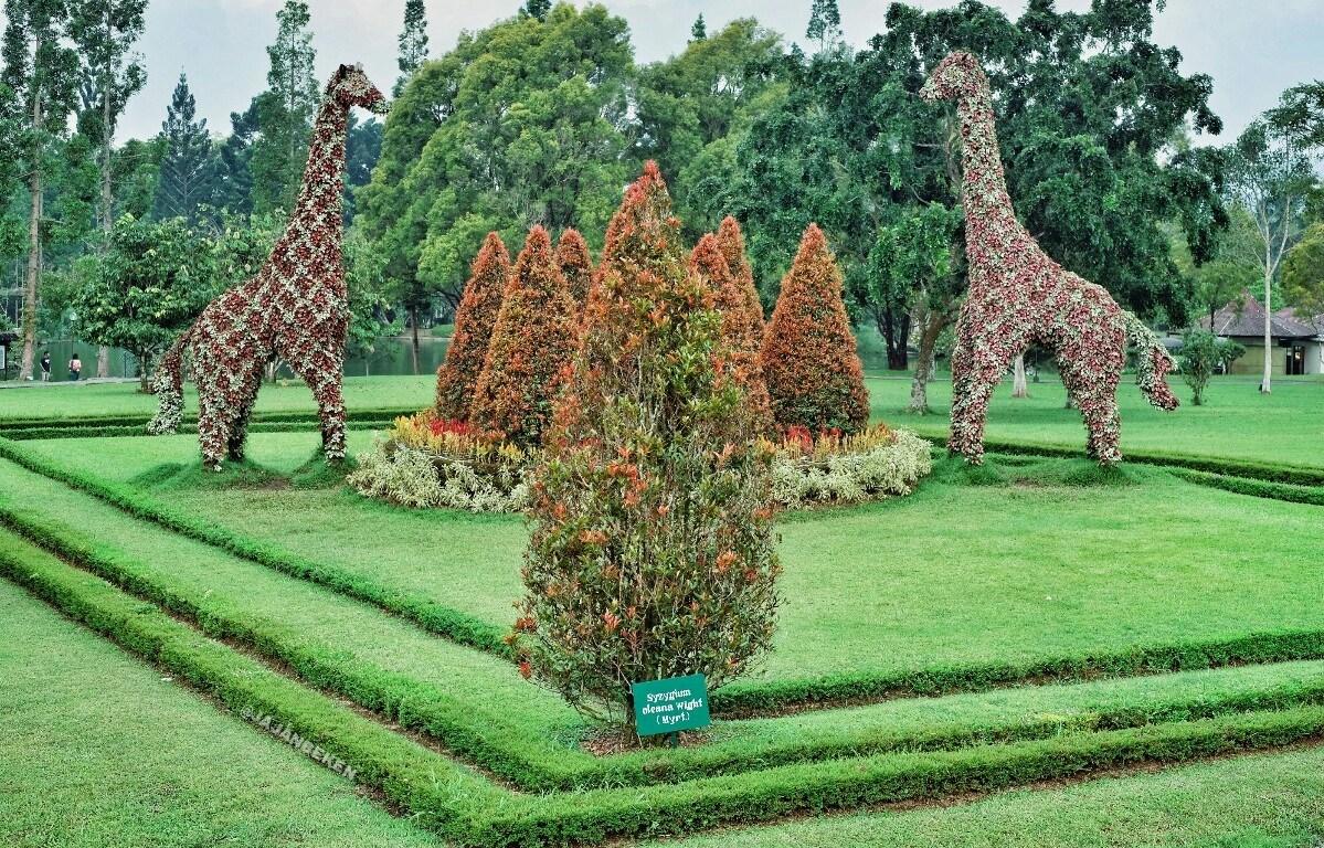 Taman Bunga Nusantara Jawa Barat