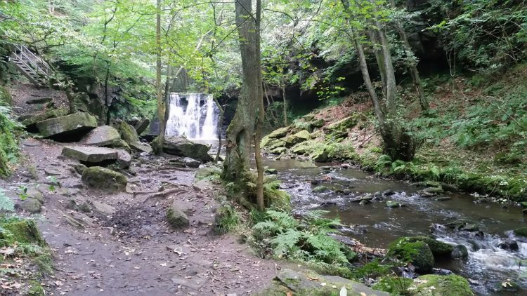 Yoga Retreats including a visit to the beautiful Goit Stock Waterfall near Harden, Wilsden and CUllingworth.