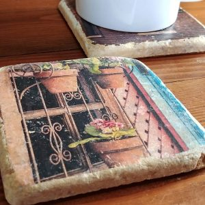 Potted Plant Window Coaster