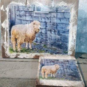 Cape Breton Sheep Wall Decor by Kelly Cushing