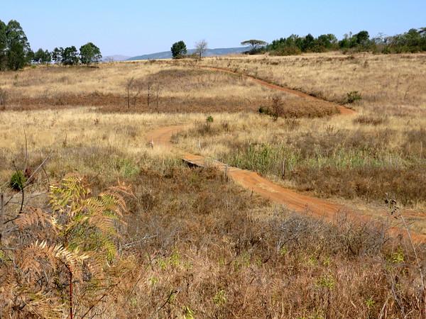 Hippo Trail