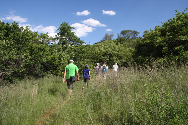 Setting off into the Koppies