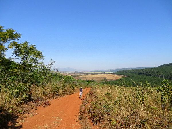 Hippo Trail Views